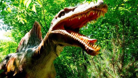 Выставка, шоу динозавров в Санкт-Петербурге