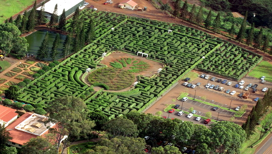 trekearthdoleplantationmaze